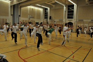 capoeira-meeting-copenhagen-2010-0223